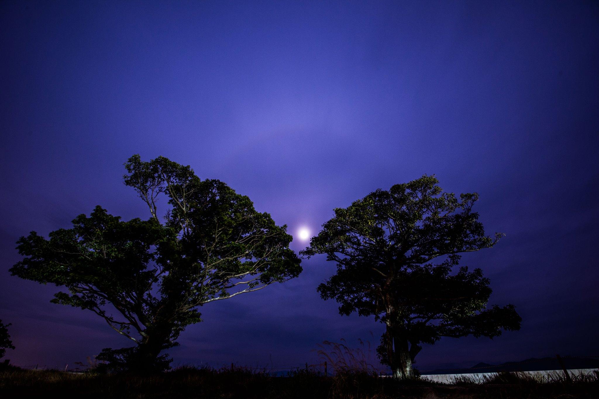 重久清隆,橋口洋和,コラボ,博多日本酒,碧き夜,満月