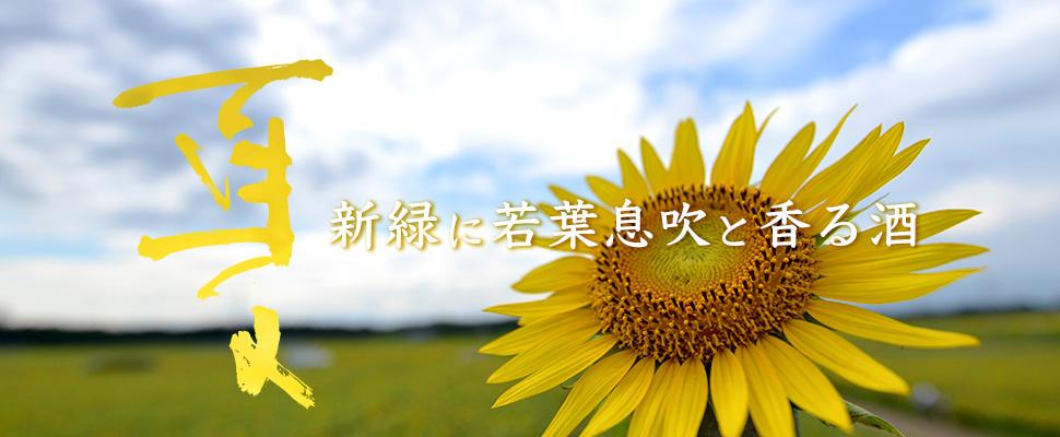 夏 新緑に若葉息吹と香る酒