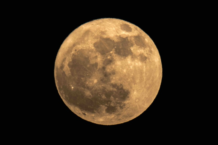 望月,藤原道長,満月,月見て一杯,知覧平和会館,必死